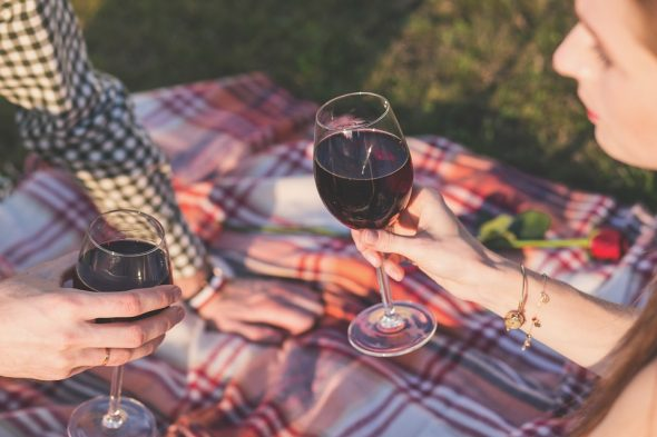 Everything You Wanted to Know About Wine