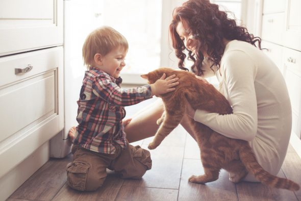The Advantages of Introducing a Pet into the Family