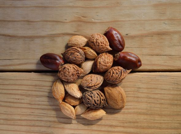 Easy, healthy snacks you need to try