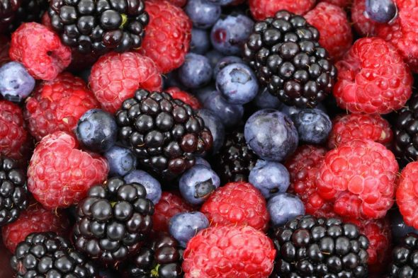 How to Manage Fructose Intolerance